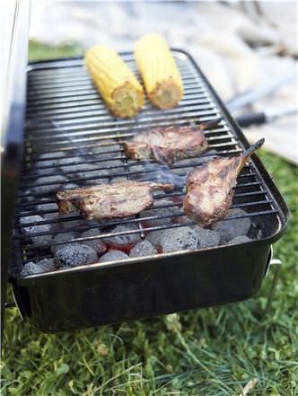 ... Charcoal Barbecue / Countertop / Steel GO ANYWHERE® Weber USA ...
