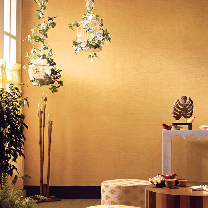 Decorative paint for walls interior effect KORA GRASS