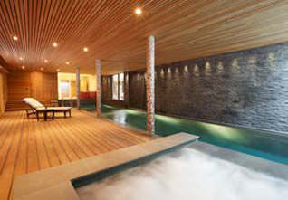In Ground Swimming Pool Concrete For Hotels Indoor