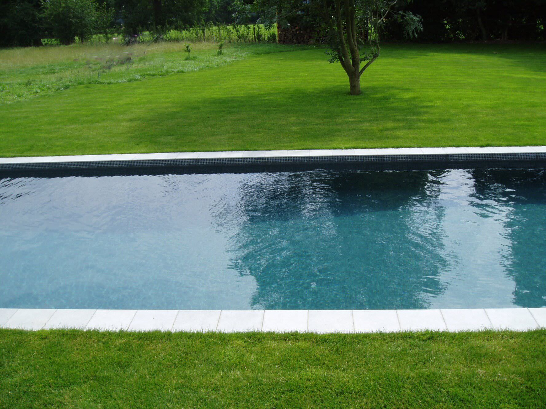 Home Swimming Pools On Ground in ground lap pools - creditrestore