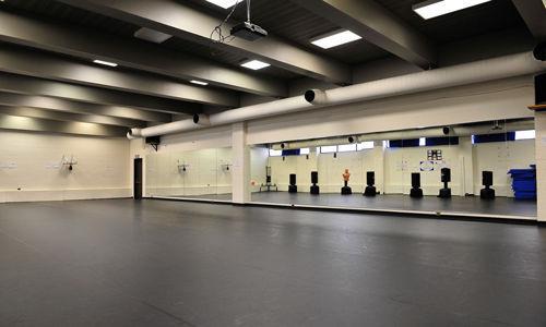 ... floating sprung dance floor / wooden / for permanent installation / shock absorption