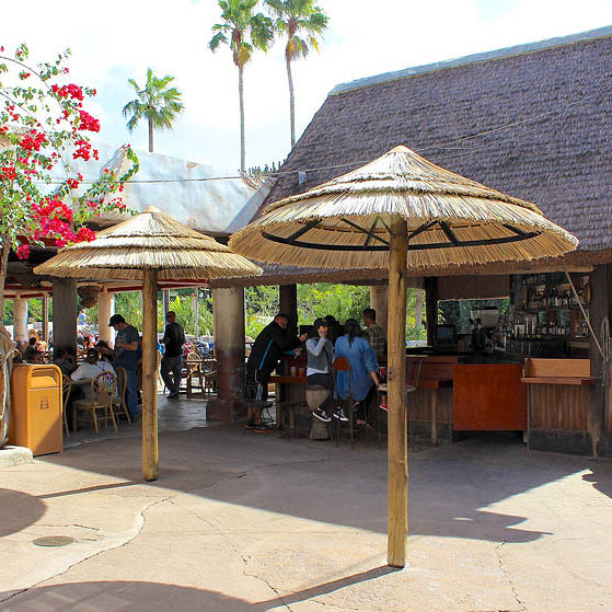 Commercial Thatched Patio Umbrella   VIROUMBRELLA VIROREED