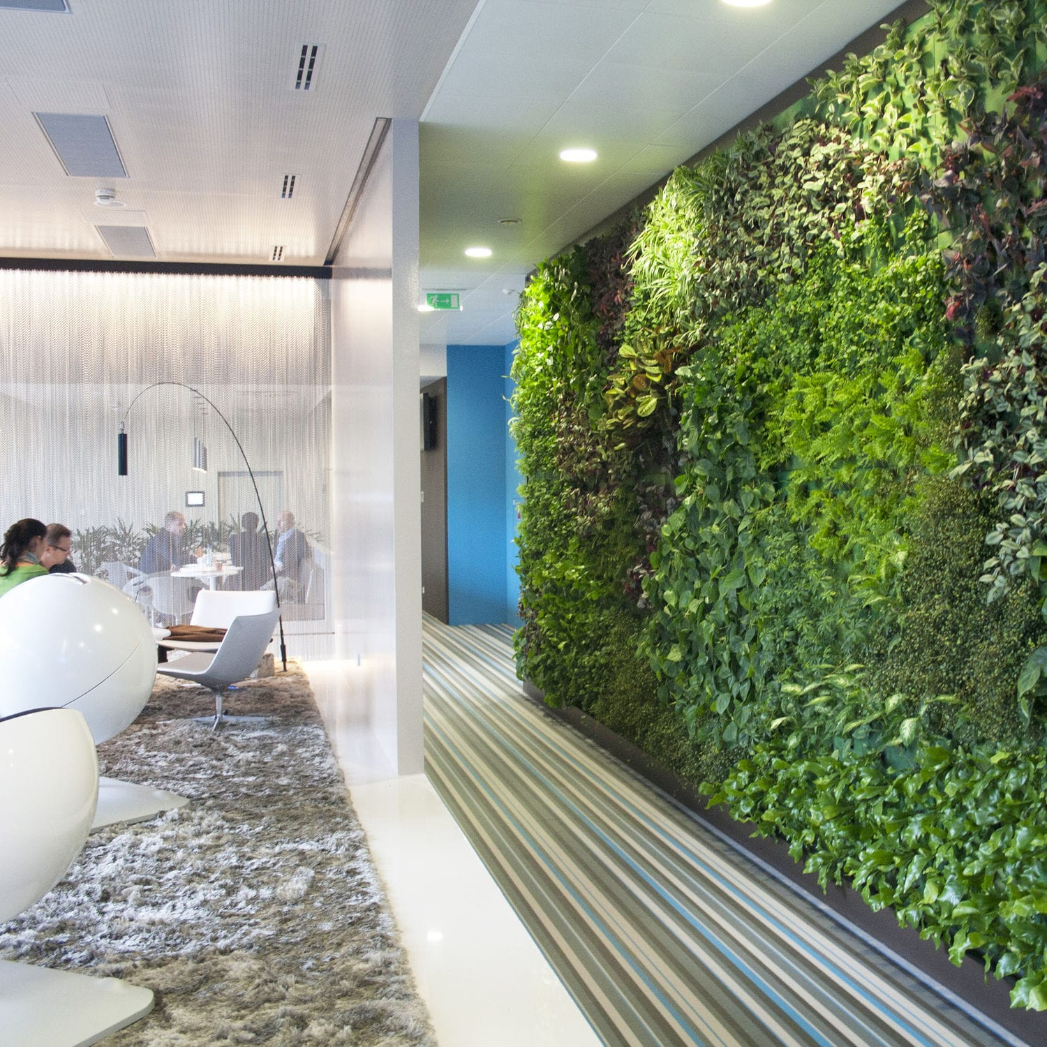 Indoor Green Wall   GREENIN´OFFICE