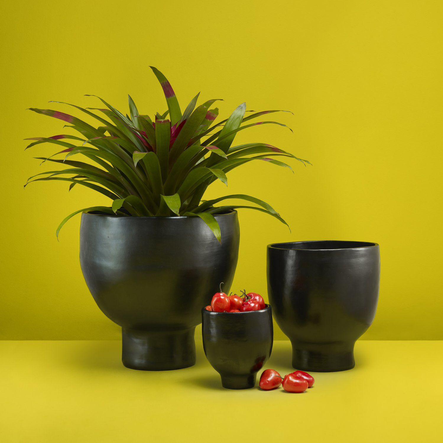 Ceramic Flower Pot Free Standing Other Shapes Barro By