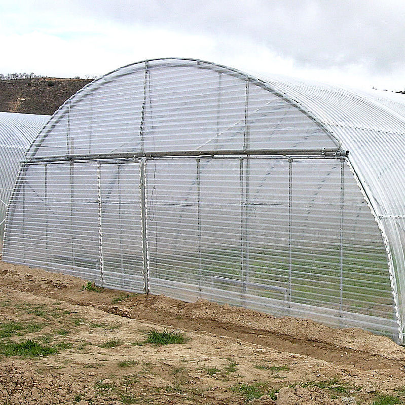 Commercial greenhouse / commercial production / single-span / steel ...