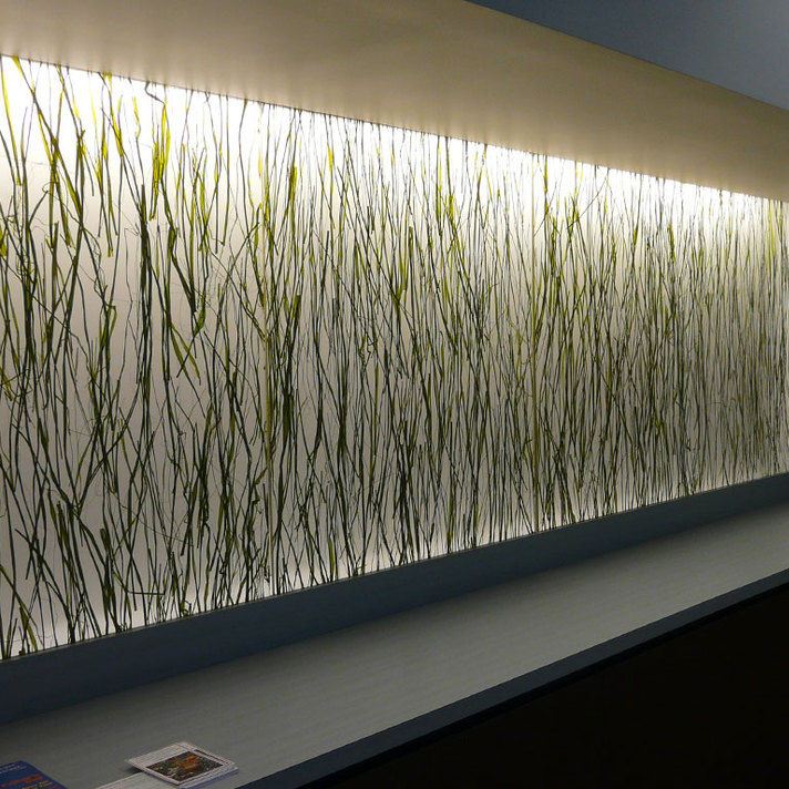Resin Decorative Panel Wall Mounted For Interior Translucent Seaweed