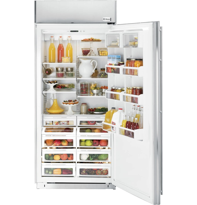 Energy Efficient Kitchen Appliances Upright Refrigerator Stainless Steel Energy Efficient Built