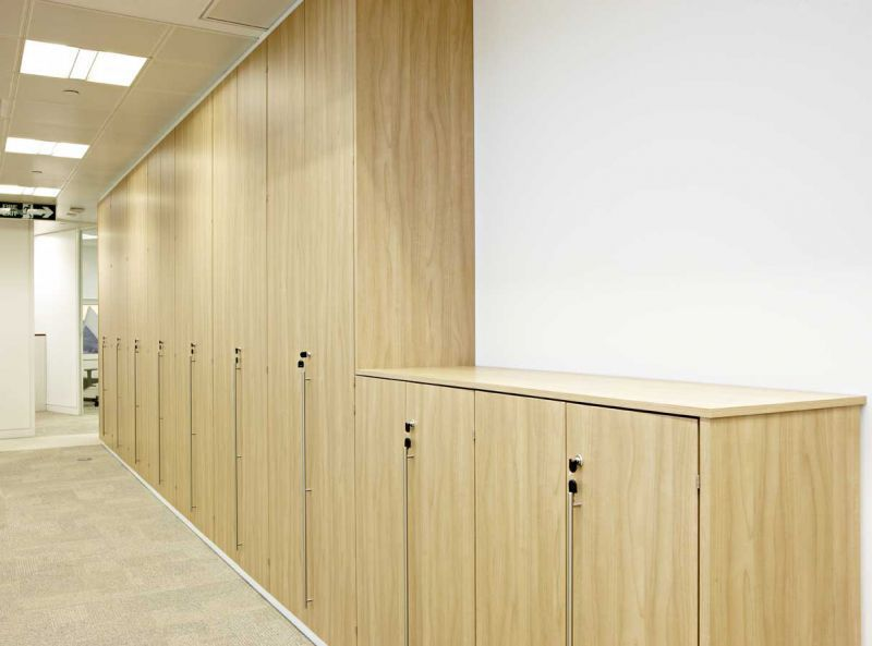 Tall filing cabinet / wall-mounted / with hinged door / contemporary -  SMARTWALL - - Wall Mounted File Cabinet Cymun Designs