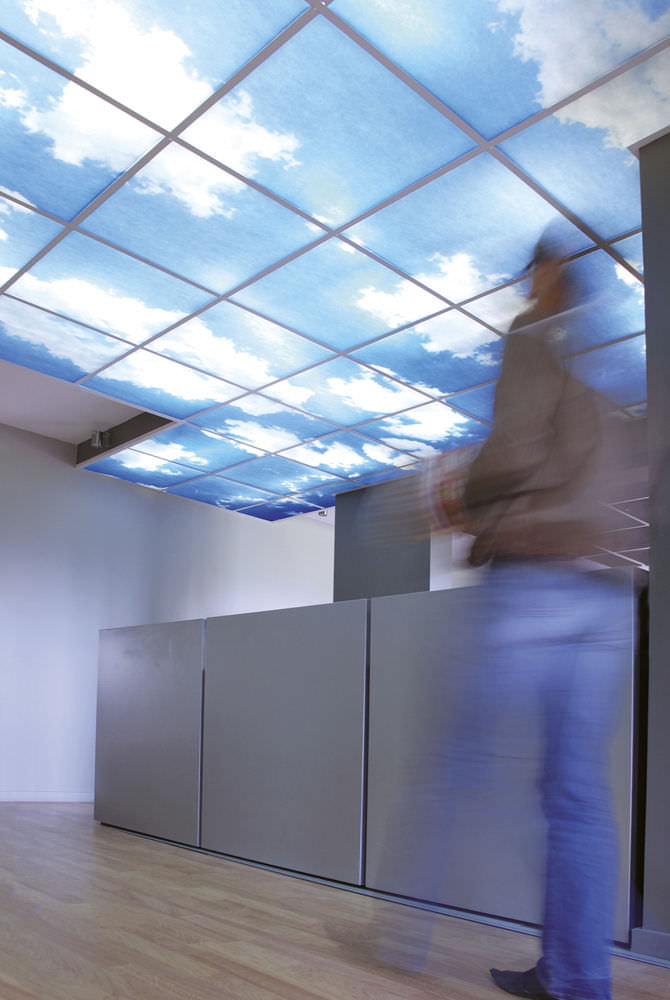 Polyester Suspended Ceiling Tile Printed Dalles Sky Retroeclairees