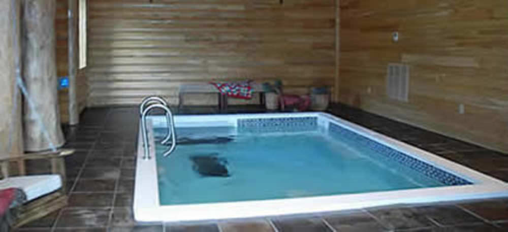 Built-in swim spa - 1000-S - SwimEx, Inc.
