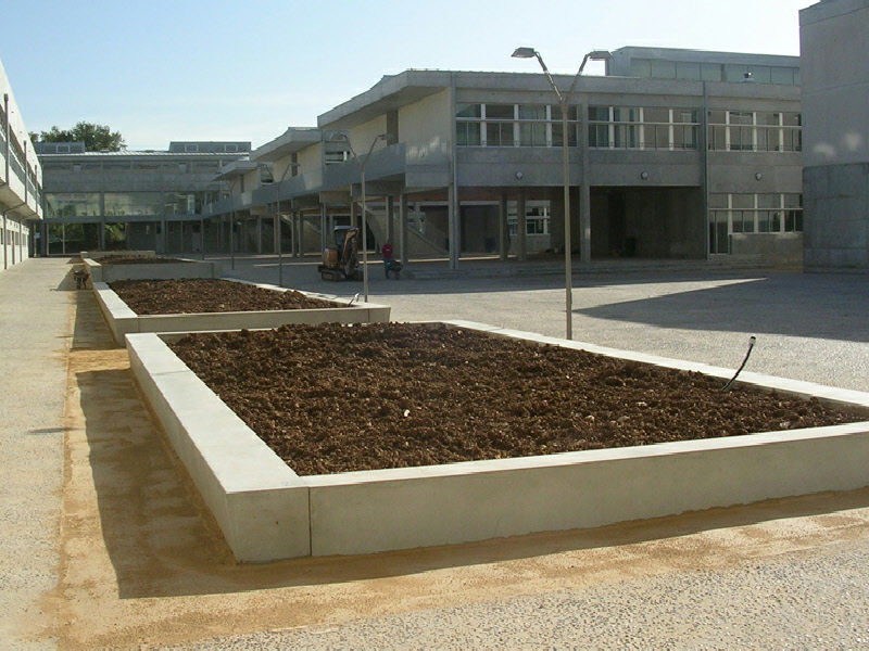 concrete planter rectangular for public areas