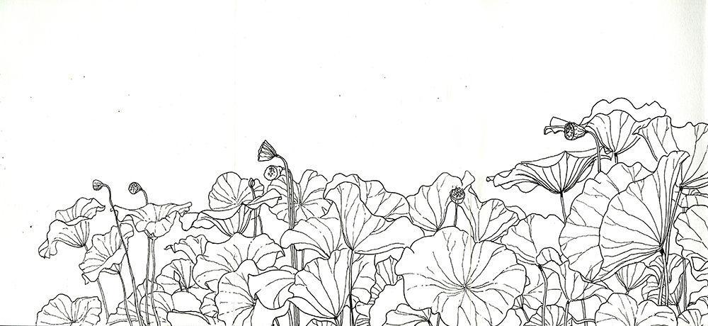 Original Design Wallpaper Contemporary Floral Japon Fleurs
