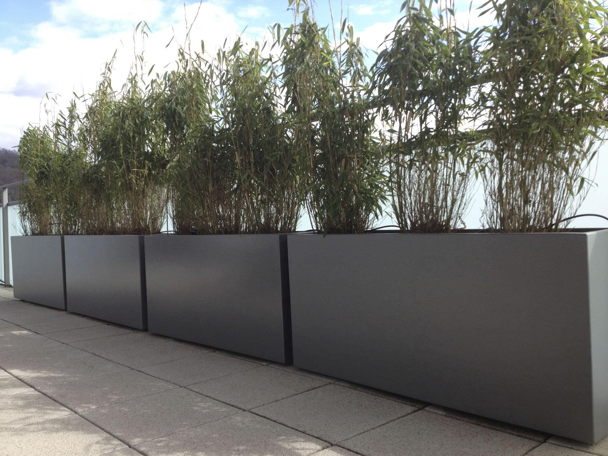fiber cement planter  rectangular  contemporary  for public  -  fiber cement planter  rectangular  contemporary  for public areasirfh atelier so