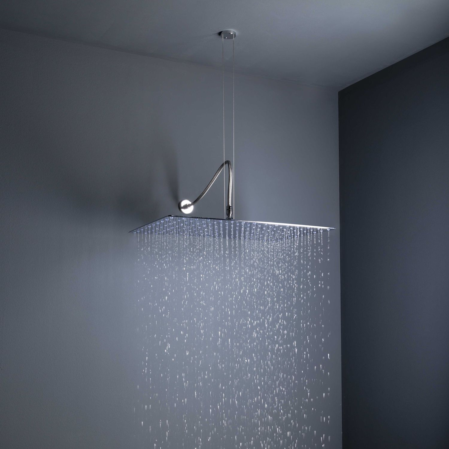 ceiling-mounted shower head / wall-mounted / round / rain - big