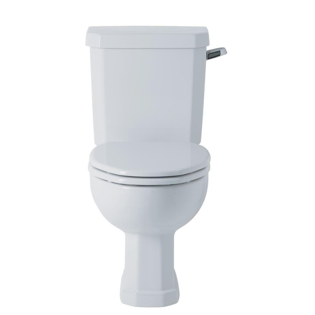 Toilet Cistern Lever Gold Hudson Reed Luxury Ceramic Cistern