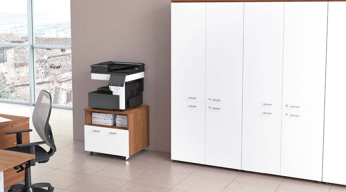 Tall Filing Cabinet / Laminate / Wooden / With Hinged Door