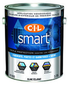 Self Priming Paint For Walls Cil Smart3