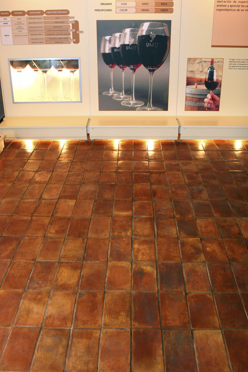 Indoor Tile Floor Terracotta Matte