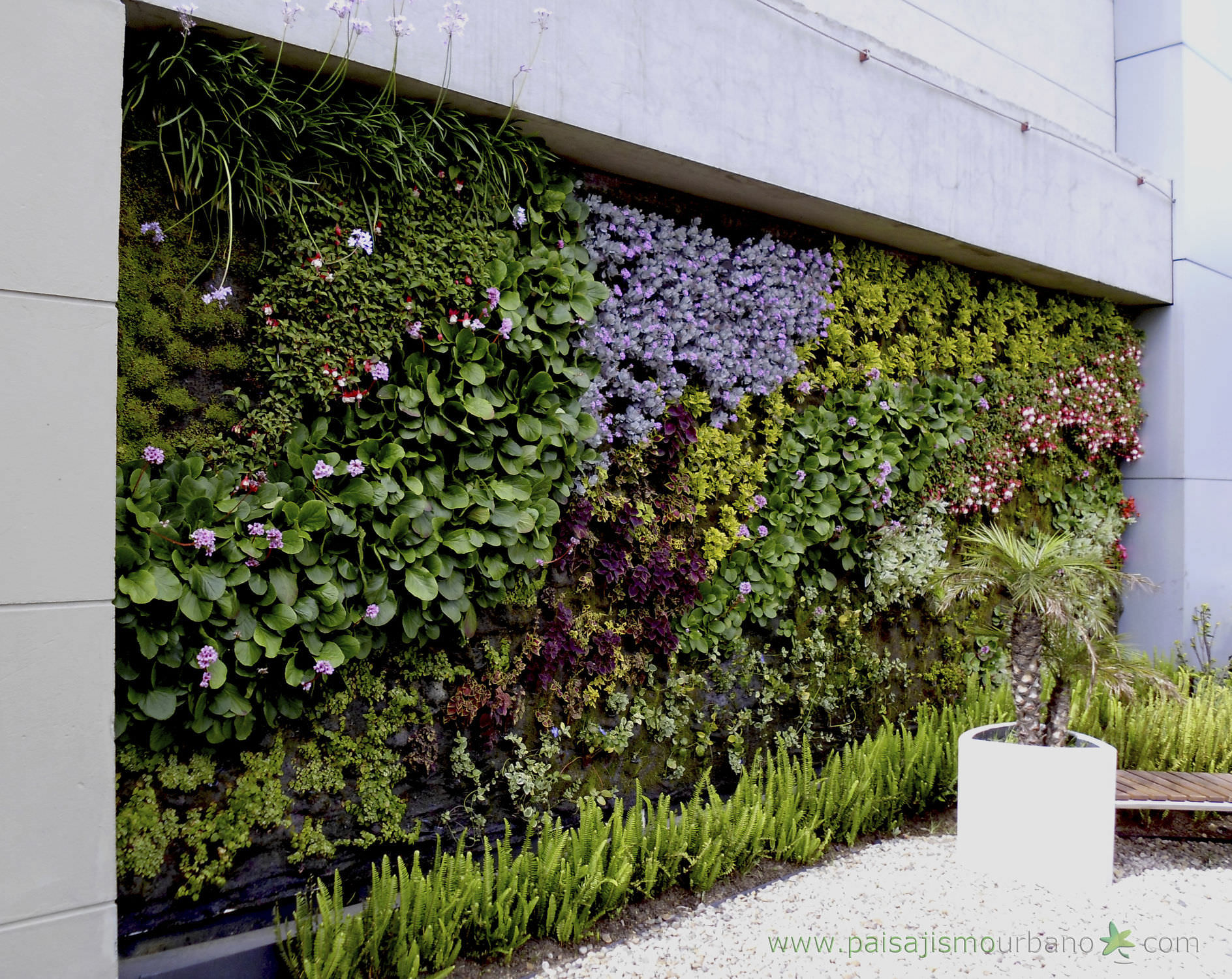 Jardin Verticale exterior green facade - jardin vertical biomax - paisajismo urbano