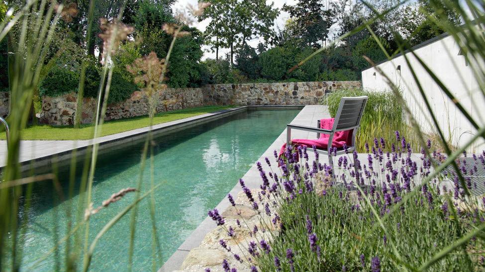 Natural swimming pool (lap pool) - BIOTOP - BIOTOP ...