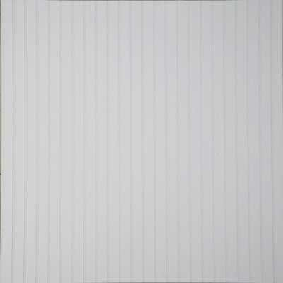 Decorative white wood wall panels