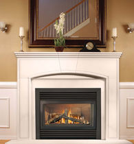 Gas closed hearth / 1-sided / metal / for fireplaces