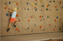 Climbing wall panel / indoor