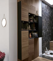 Contemporary bathroom / walnut