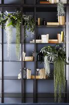 Contemporary shelf / wooden / metal / glass