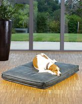 Pet dogs and cats cushion / square / plain / leather