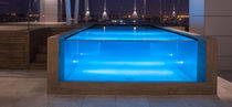 Above-ground swimming pool / concrete / glass / for hotels