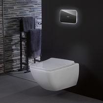 Toilet flush plate