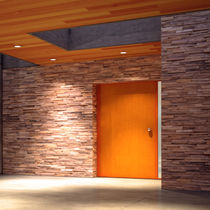 Teak wall cladding / exterior / 3D