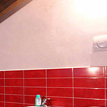 Protective paint / for walls / for concrete / interior