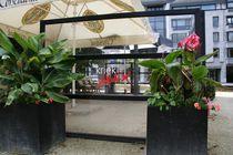 Contemporary screen / glass / commercial / patio