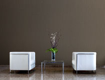 Vinyl wallcovering / residential / commercial / textured