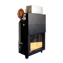 Closed wood hearth / multi-fuel / 1-sided / metal