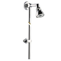 Wall-mounted shower head / round / professional
