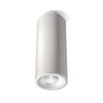 Surface mounted downlight / LED / round / aluminum