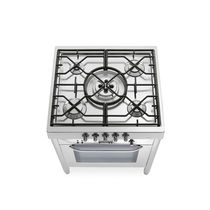 Gas range cooker / electric / cast iron / stainless steel