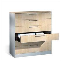 Low filing cabinet / wooden / steel / melamine