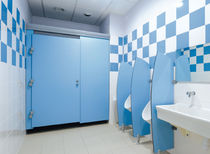 Urinal partition / professional