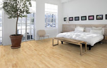 Engineered parquet flooring / ash / lacquered / strip