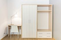 Contemporary wardrobe / wooden / for hotels