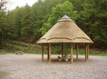 Wooden gazebo / with thatched roof