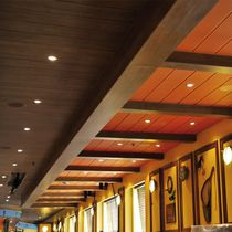 Aluminum suspended ceiling / steel / strip