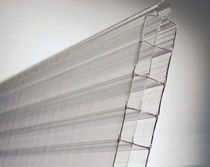 Cellular polycarbonate sheet / building
