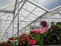 Polycarbonate greenhouse / commercial