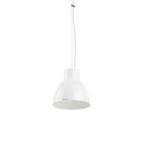 Hanging light fixture / incandescent / HID / halogen