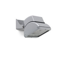Floodlight projector / IP20 / IP66 / compact fluorescent lamp